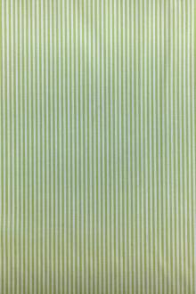 Pima Cotton Shirting Stripe in Lime0